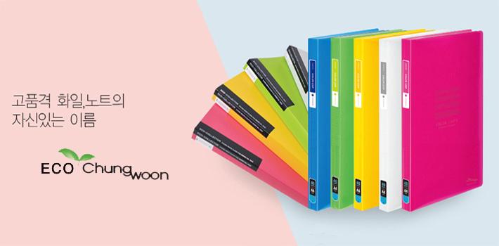 청운화일 칼라칩 스프링화일 30P (A4) - 펜스테이션, 5,000원, 파일/클립보드, 클리어화일